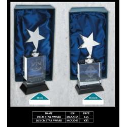 19cm Star Award